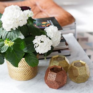 Brass Flower Pot Adds A Metallic Tinge To The Apartment Room Decor Ideas