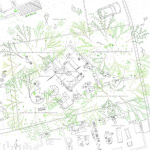 Forest House In The City Site Plan