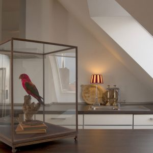 Parrot For Room Accessories Artistic Room Design