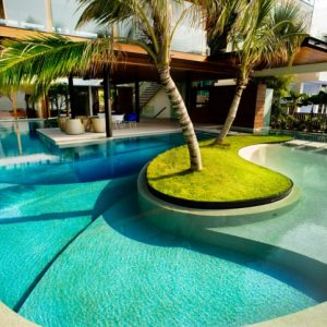 Beautiful Swimming Pool Design With Coconut Tree In The Center