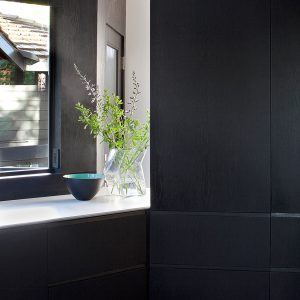 Black Wooden Cabinet Healthy House Area