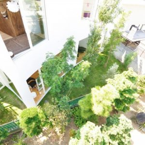 City House With Green Garden Surrounding Eco Frienly House In Japan