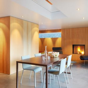 Modern Dining Furniture With Modern Fireplace