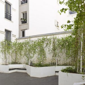 The Outdoor Sapce Of The Apartment With White Concrete Fence And Green Trees