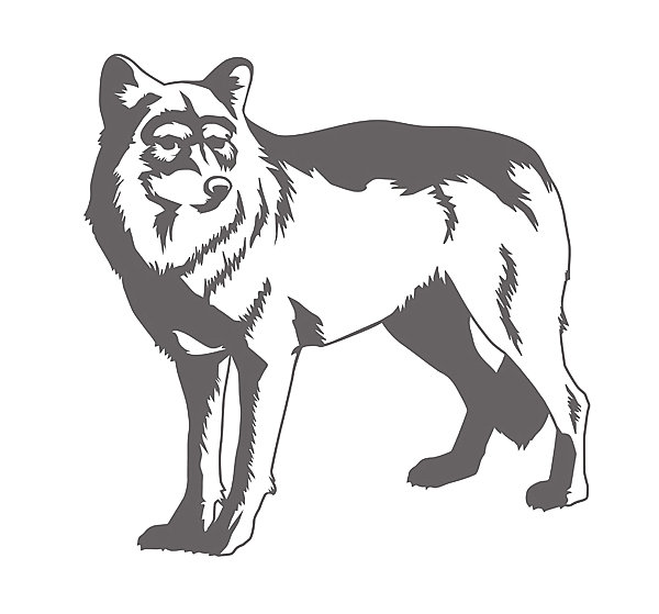 Wolf Wall Decal For Your Boy's Room Decor