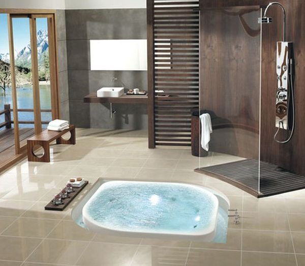 Amazing Glass Shower Space And Ergonomic Jacuzzi Design With Adjustable Panel