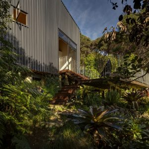 Green Tree House Design With Green Vegetation Surround