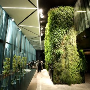 Green Wall Hotel Eco Friendly House Design Lush Plants Wall Hotel