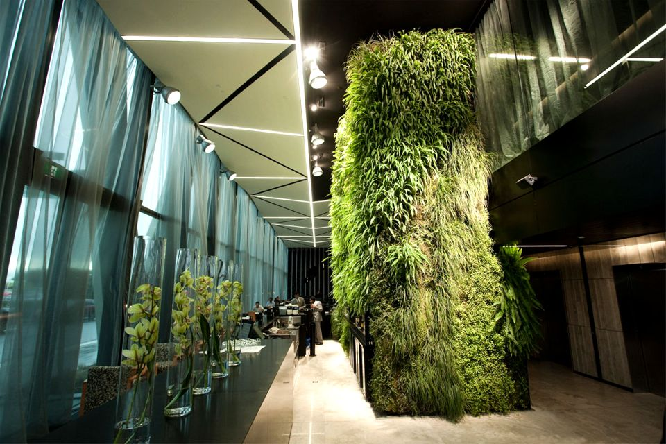 Bedroom green wall hotel eco friendly house design lush for Interior house design green