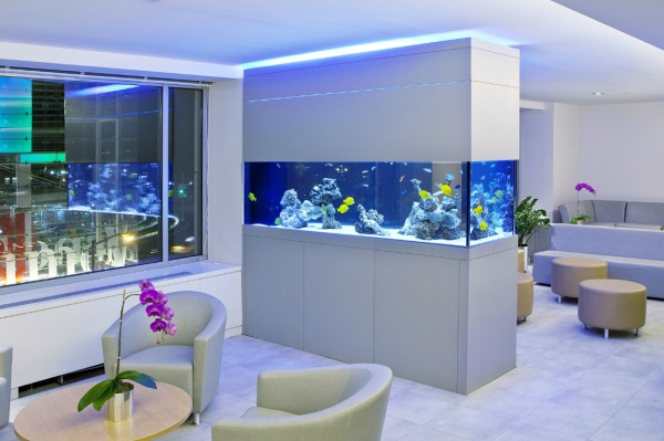 Beautiful Custom Aquarium In The Waiting Room For Modern Fish Tank Design