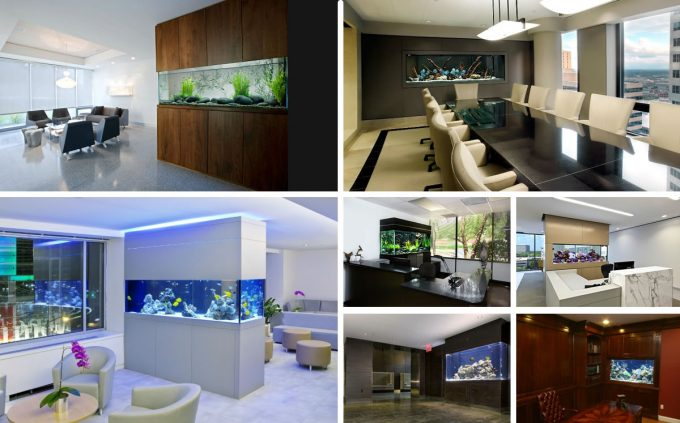 Beautiful Eclectic Home Office Aquariums To Make Relaxing Feelings