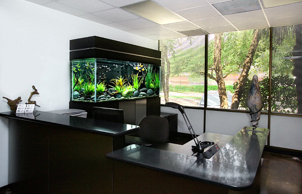 Beautiful Work Space Design With Black Aquarium For The Office