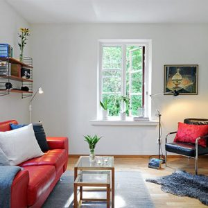 Compact Scandinavian Living Room With Red Sofa Decor