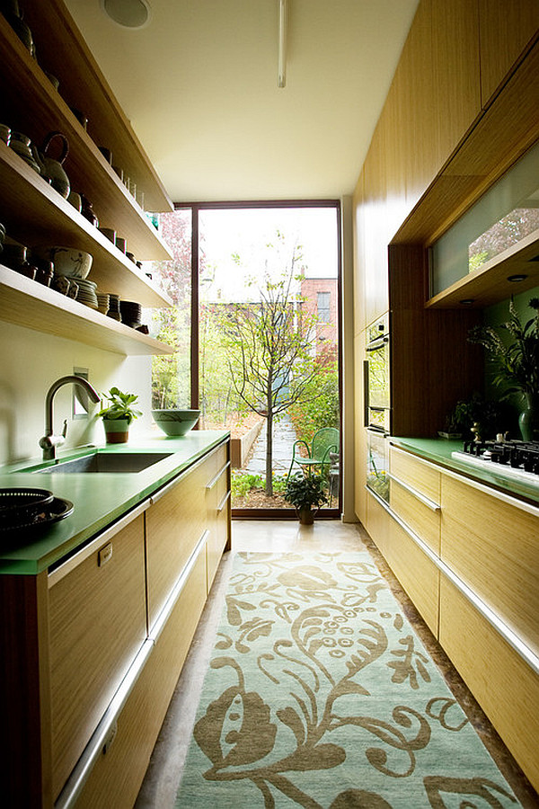 Green Themed Galley Kitchen With Area Rug And Floor To Ceiling Window
