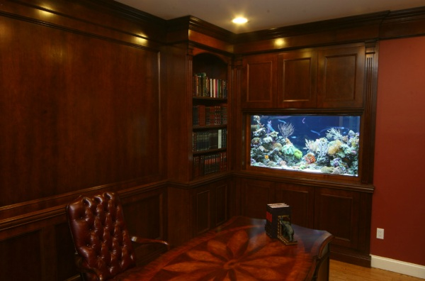 Peaceful Accent With Aquarium For The Home Office