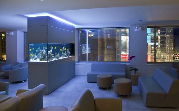Waiting Room Aquarium At Night With Blue Neon Decor