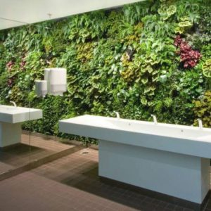Vertical Garden In Tiolet Interior Decor