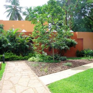 Beautiful Landscape With Walkway And Greeneries