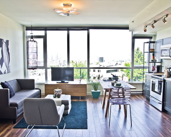 Family Room Furniture Arrangement With Linear Kitchen And Large Floor To Ceiling Window In Small Apartment Decoration