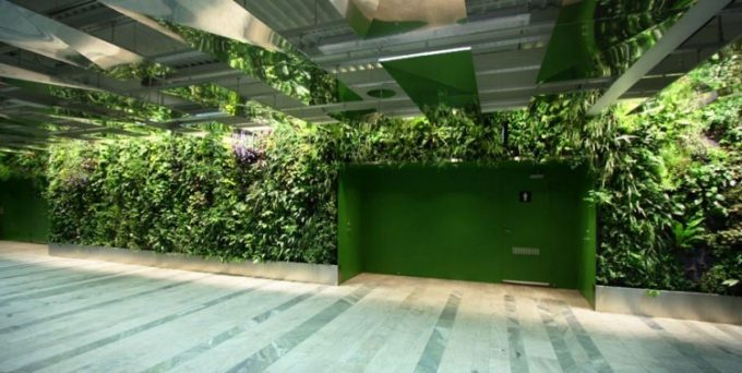 Green Toilet Entry With Green Wall Decor