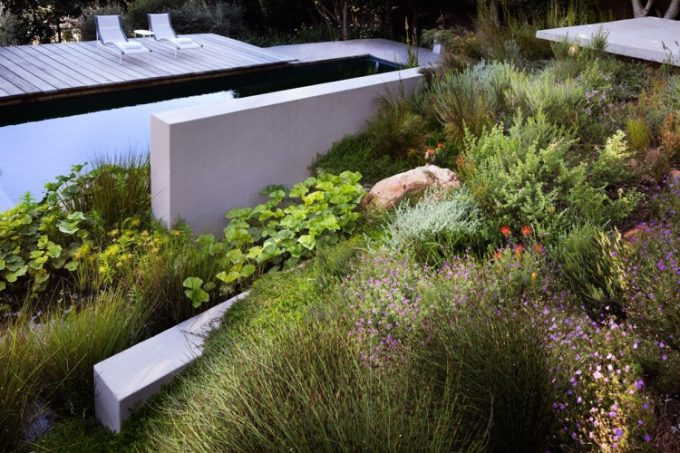 Ponds Pool And Garden Is Perfect Ideas For Modern Landscaping