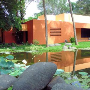 Ponds With Lotus Tree For Beautiful Landscape Design