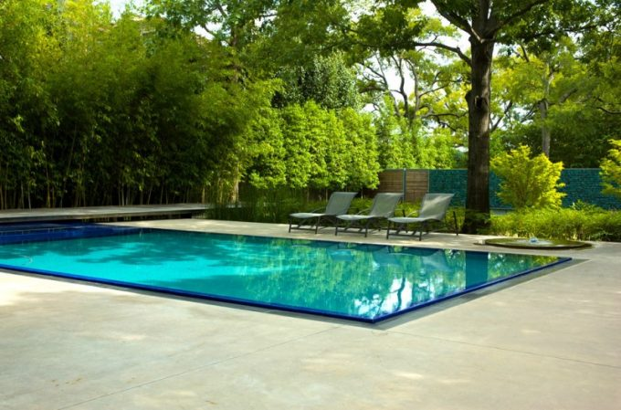 Relaxing Pool Design With Big Tree As Canopy