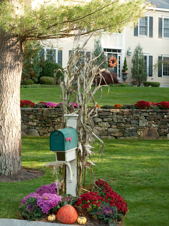 Traditional Exterior With Birdhouse Mailbox With Flowers Plant Beneath Also Green Grass Backsplash