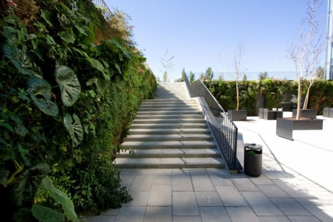 Vertical Wall Garden With Concrete Stairs And Black Steel Hand Railing