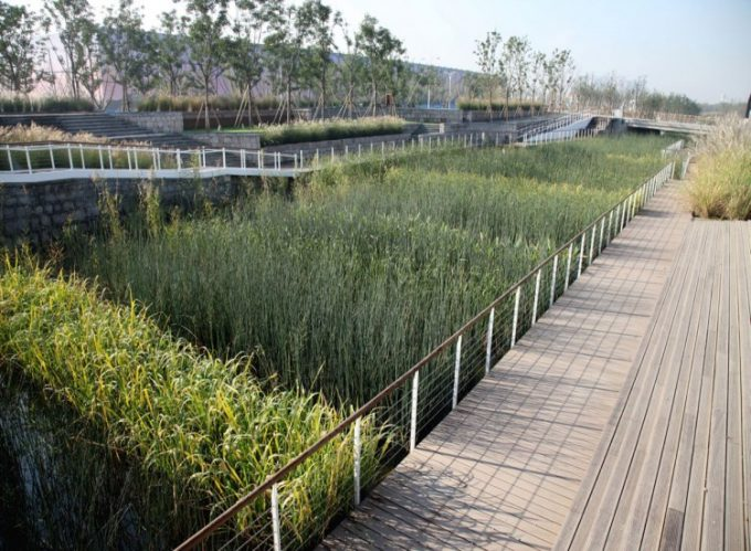Wooden Walway In Bot Side Of The River Modern Garden Design