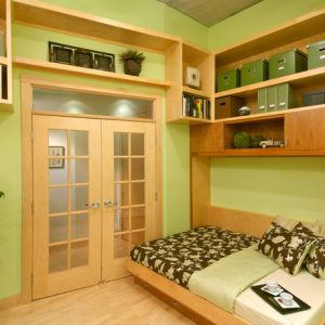 Contemporary Home Office With Wall Bed Couch And Wood Shelving And Glass Pocket Doors Also Green Wall With Wooden Floor