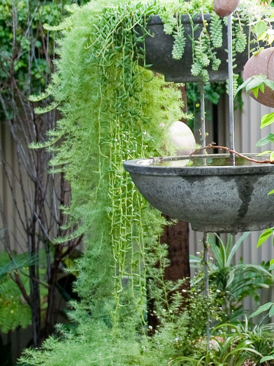 Contemporary Landscape With Designer Bird Baths Using Hanging Sytle Birdbath And Hang Planters