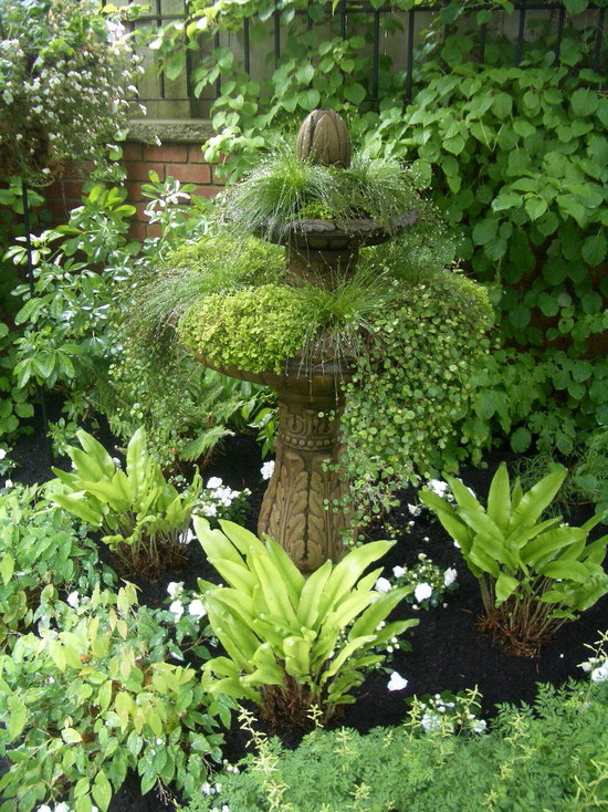 Green Landscape With Designer Bird Baths With Plants And Garden With Small Plants Decor