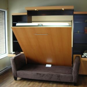 Multi Function Room With Wall Bed Couch And Brown Sofa And Dark Blue Shelving And Glass Windows