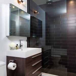 Glass Shower Space And Brown Tile Wall Also Mirror Medicine Box Decor For Contemporary Small Bathroom Ideas