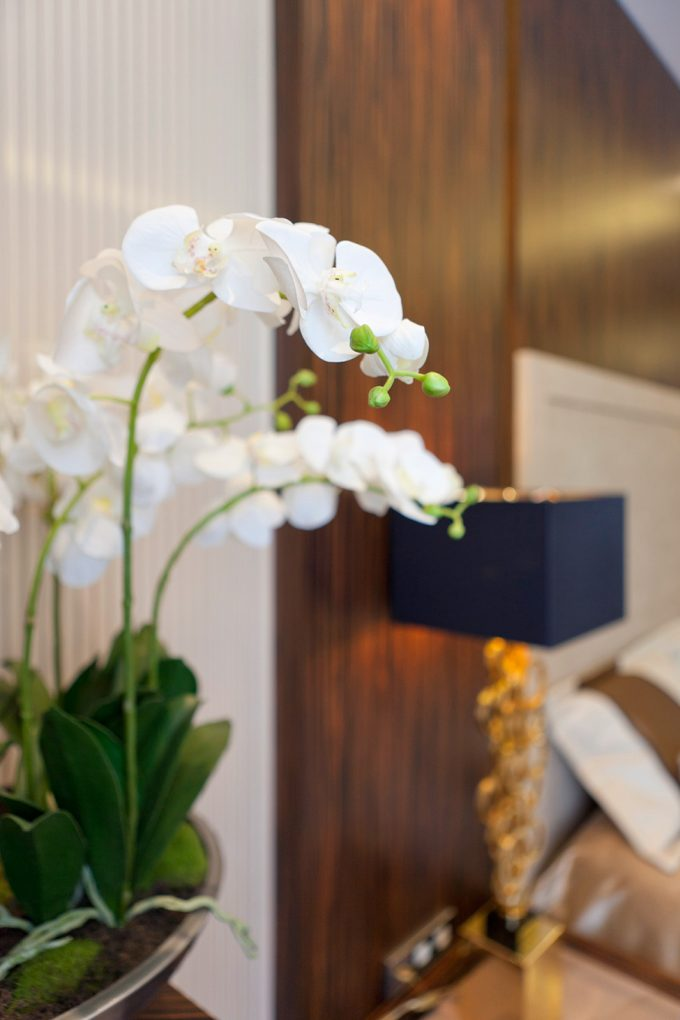 Life Orchid Flowers And Wooden Accent For Room Interior Decor