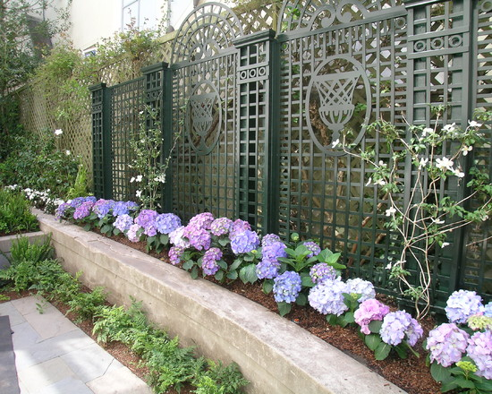 Traditional Landscape With Purple Flower And Decorative Lattice Screen Designs