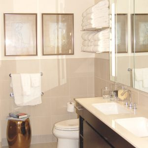 Bathroom Fixtures Plus bathroom: modern bathroom with frosted glass and modern fixtures
