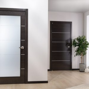 Contemporary Interior Design With Modern Interior Doors Plus Sheer Curtain And Interior Plant With Potted Ceramic On Polish Concrete Flooring And White Wall For Contemporary Entry