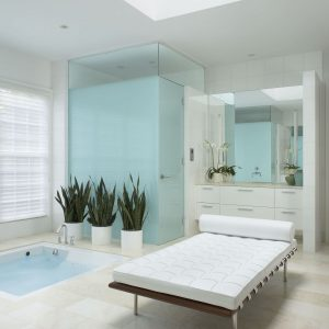 Flush Cabinets And Bathroom Mirror Plus Houseplant Also Glass Shower Enclosures With Frosted Glass Plus Jetted Tub And Leather Bench With Skylight Plus Recessed Lighting Also Walk In Shower
