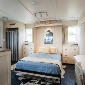 Modern Bedroom With Murphy Bed And Bedding Also Wall Art And Dressers With Window Treatments Plus Ceilings And Track Lighting With Wall Paneling And Cowhide Rugs