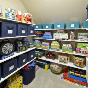 Contemporary Closet With Blue Storage Bins Also Storage Boxes Plus Carpeting And Fabric Bins With Toy Closet And Toy Shelves Also Toy Storage In Small Space For Toy Storage